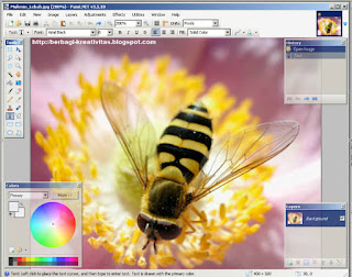 Download Paint NET 3.5.10.Install Windows Gratis