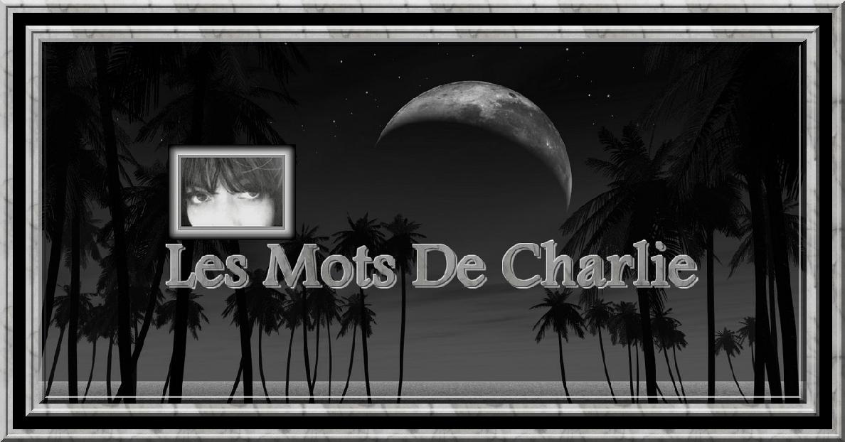 Les Mots de Charlie