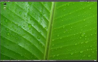 Cinnamon en Linux Mint con panel arriba y abajo a la vez
