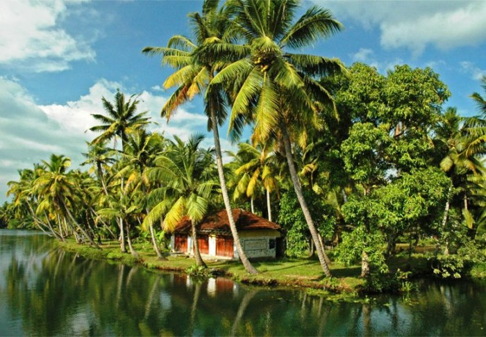 Sailing In The Beautiful Land Of Kerala Insight India A Travel Guide To India