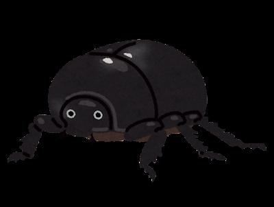メスのカブトムシのイラスト(黒)