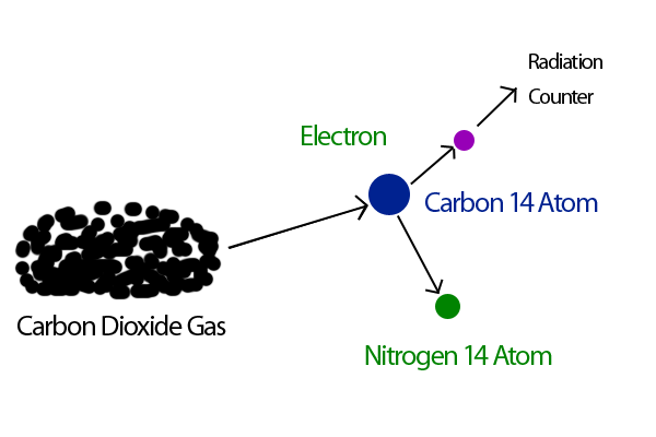 why is carbon 14 used for radiocarbon dating Radiocarbon dating can be used to find the age of things that were once alive  find out how carbon-14 dating works and why carbon-14 dating is so accurate.