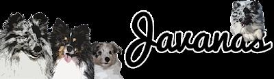 Javanas