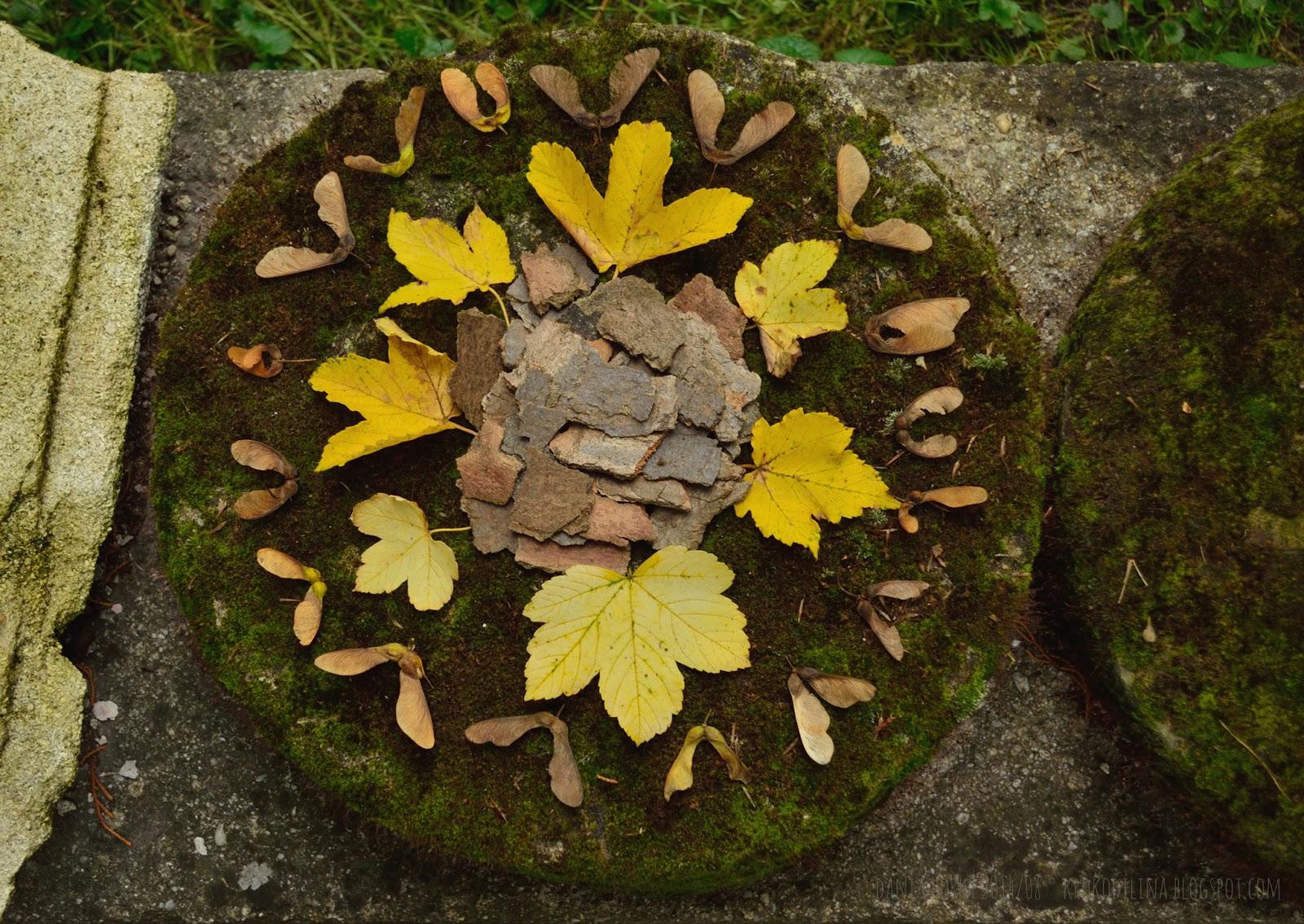 Wald sinnen naturmandala 2 - Basteln mit naturmaterialien wald ...