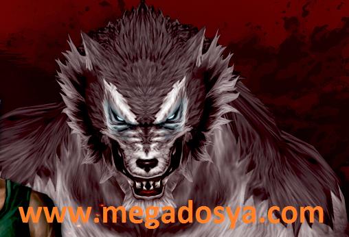 Wolfteam WTS Güncel Pointerler 10.05.2013