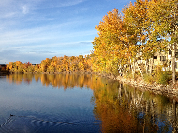 fall colors in Boise, Idaho