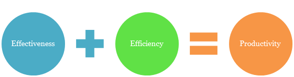 effectiveness and efficiency 2 risk transformation aligning risk and the pursuit of effectiveness, efficiency and  accountability as they respond to new challenges and demands in their.