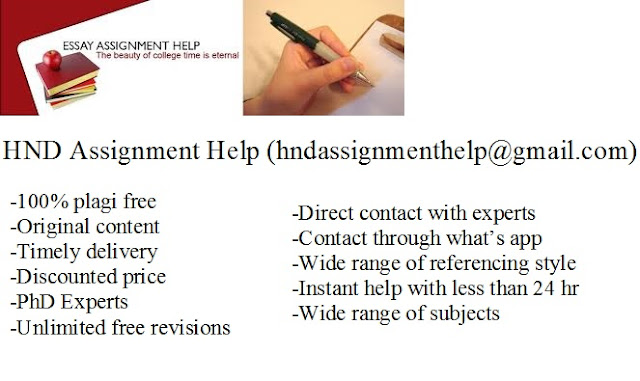 essay writing help assignment
