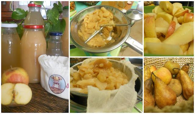Stefycunsyinyourkitchen succo di mela e succo di frutta for Succhi di frutta fatti in casa
