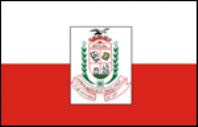 Bandeira de Irituia