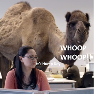 marketmenot geico camel hump day commercial a camel walks into