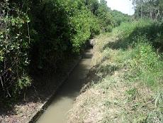 CANAL ESPARRAGAL