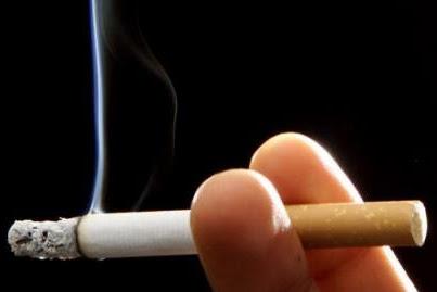 6 Jenis Buah dan Sayuran Yang Dapat Membersihkan Nikotin Dari Dalam Tubuh