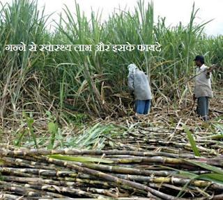 गन्ने से स्वास्थ्य लाभ , Health Benefits of Sugar Cane