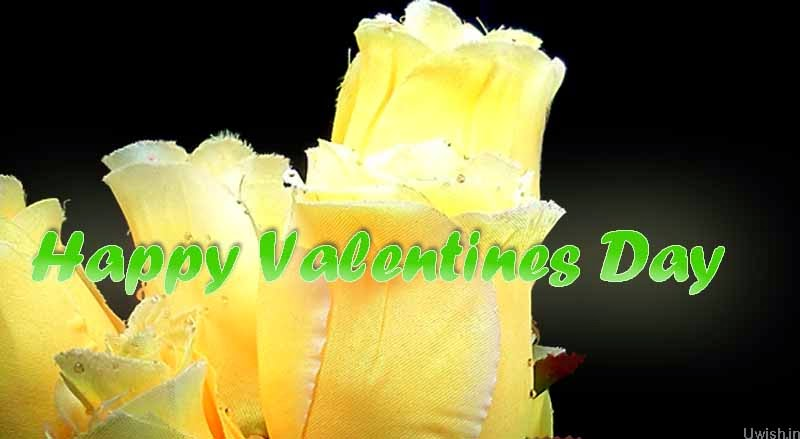 Happy Valentines Day greetings and wishes with yellow roses