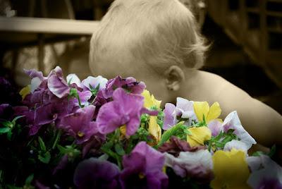 travesuras flores