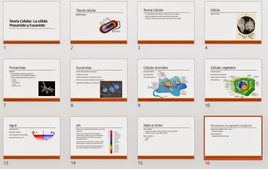 Teoría Celular: La célula Procariota y Eucariota - PPT | Planeta ...