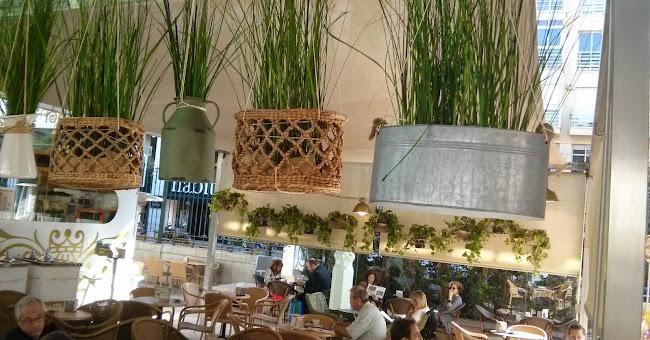 Casa de l´Orxata. Horchateria BioGelateria eco.Mercado Colón Valencia.Horchata sin gluten-lactosa