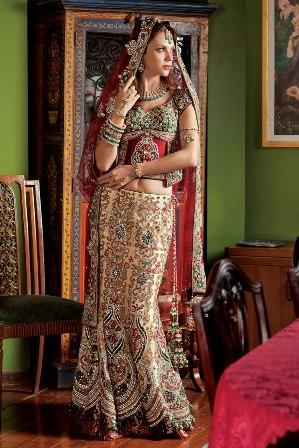Bridal-sari