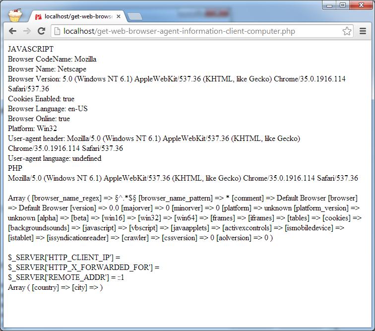 Mendapatkan Informasi Web Browser Agent dan Informasi IP Address Client Komputer Menggunakan Javascript dan PHP
