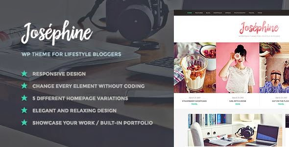 Best WordPress Theme Bloggers