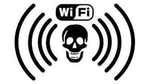Los graves daños que provoca el Wi-Fi en la salud
