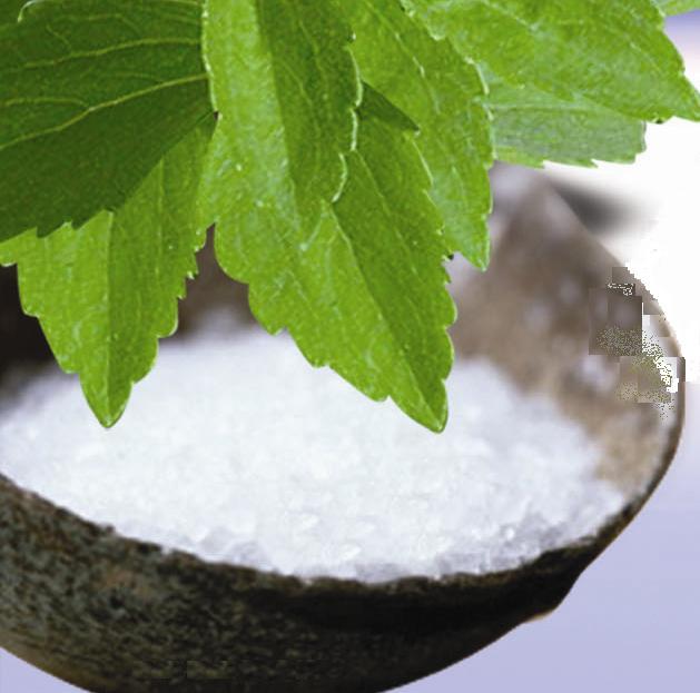 The Stevia plant