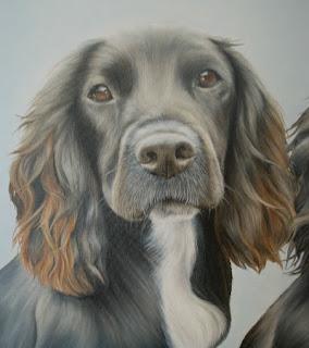 Pet portrait oil on canvas Cocker Spaniel