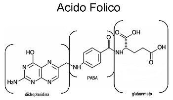 Acido folico, componenti strutturali