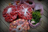 st. jacobs market haul