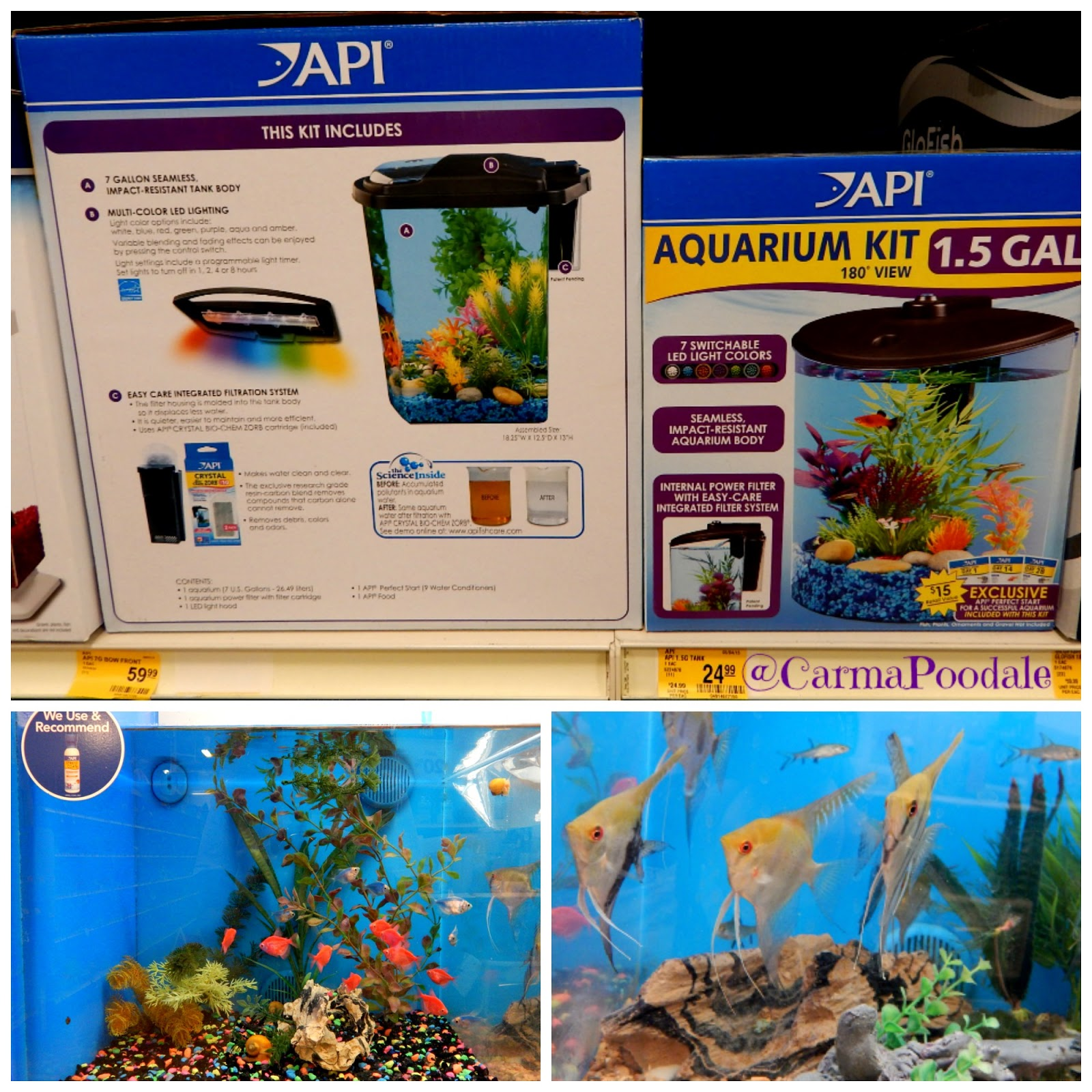 Aquarium fish tank complete system - Api Complete Fish Tanks And Easy Fish
