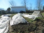 Winter Garden 2011