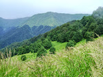 Lagodekhi Protected Areas Friends/ლაგოდეხის დაცული ტერიტორიების მეგობრები