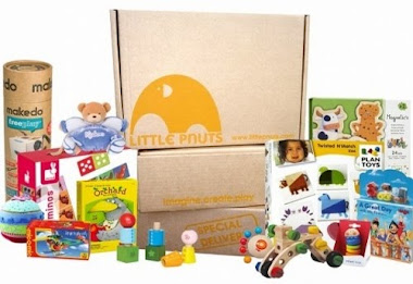 Little Pnuts Eco-Toy Subscription!