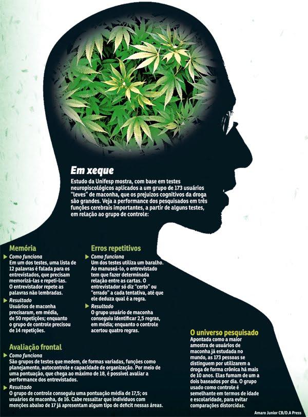 Maconha, efeitos no organismo provocados por uma droga natural…
