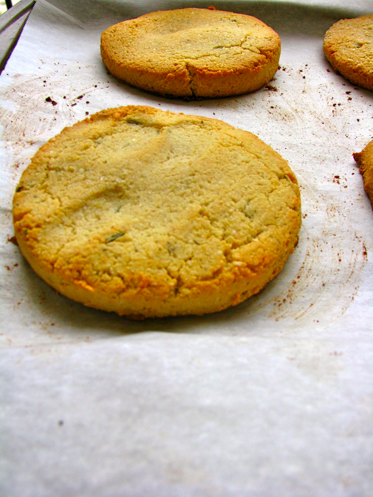 Limp biscuit meaning