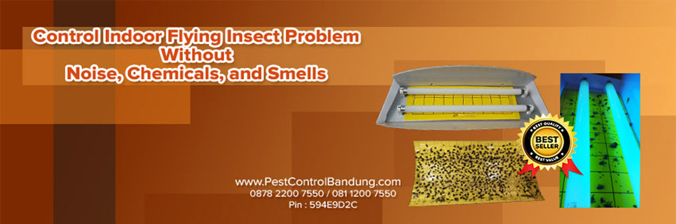 Jual Fly Catcher Murah, Jual Fly Trap, Jual Insect Fly Catcher, Jual Fly Catcher