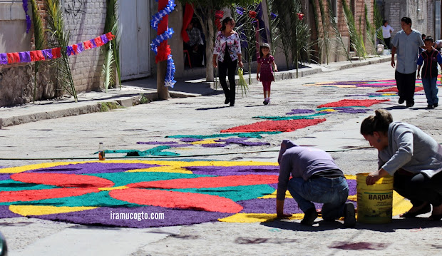 personas elaborando tapetes o alfombras de semana santa domingo de ramos