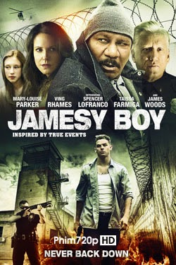 Jamesy Boy 2014 poster
