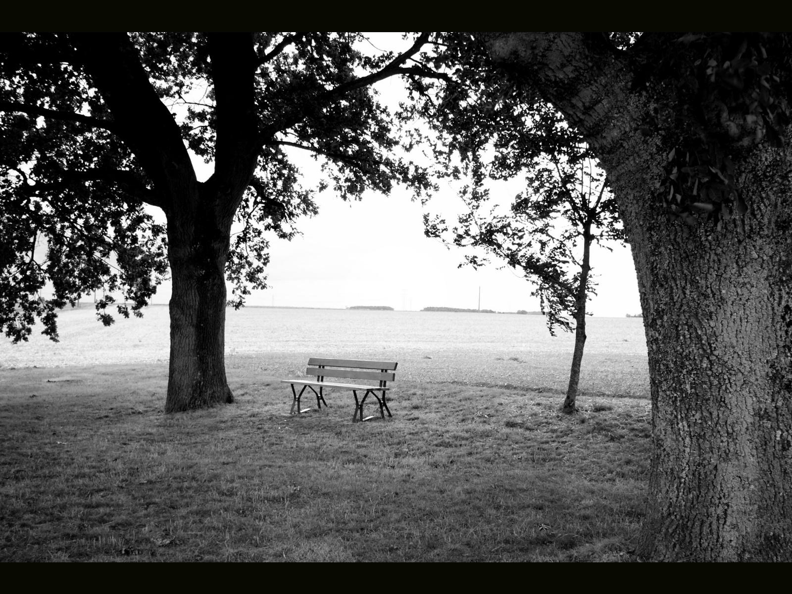 banco de jardim frases:Frases de grandes pensadores ~ etéreamusic