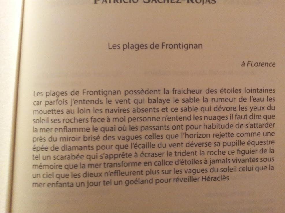 Les plages de Frontignan - Patricio SANCHEZ-ROJAS (Poésie:première N°69- France)