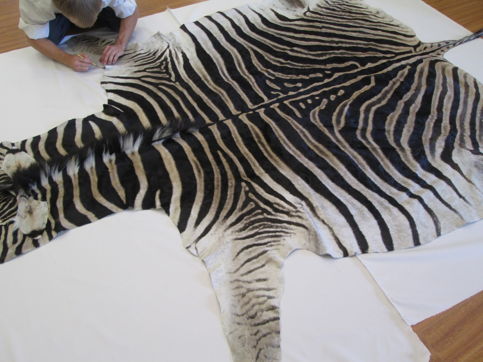 print your contemporary bedroom rug ideas fnw decorating purple complete zebra with interior beautiful design