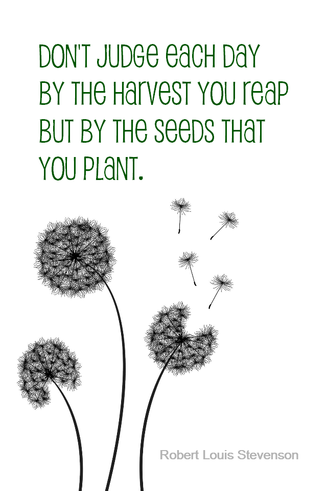 visual quote - image quotation for PROACTIVE - Don't judge each day by the harvest you reap but by the seeds that you plant. - Robert Louis Stevenson