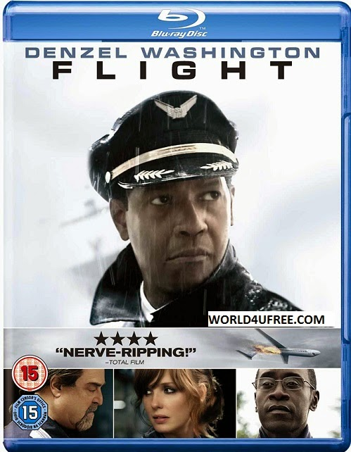 Flight 2012 Dual Audio Hindi English 350mb BRRip 480p ESub