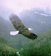 SVENSKA: Spirit Eagle, 15 Mars 2011