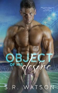 ebook erotica review lady porn college romance sports
