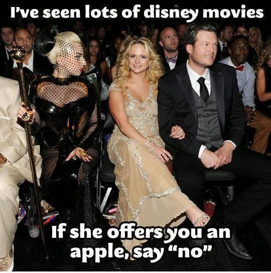 Miranda Lambert Lady Gaga filmprincesses.blogspot.com