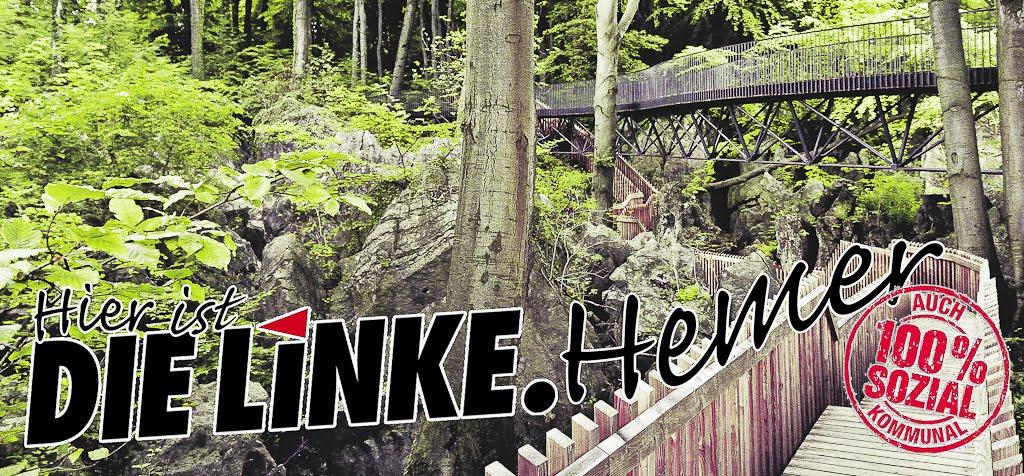 DIE LINKE.HEMER