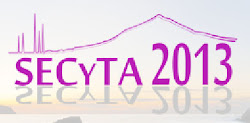 SECyTA2013, Tenerife Oct 8-11