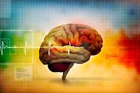 4 Tips Mudah Meningkatkan Daya Ingat Otak Anda